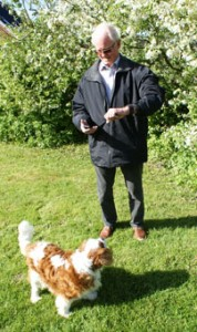 Man with ActivityWatch, Phone and Dog