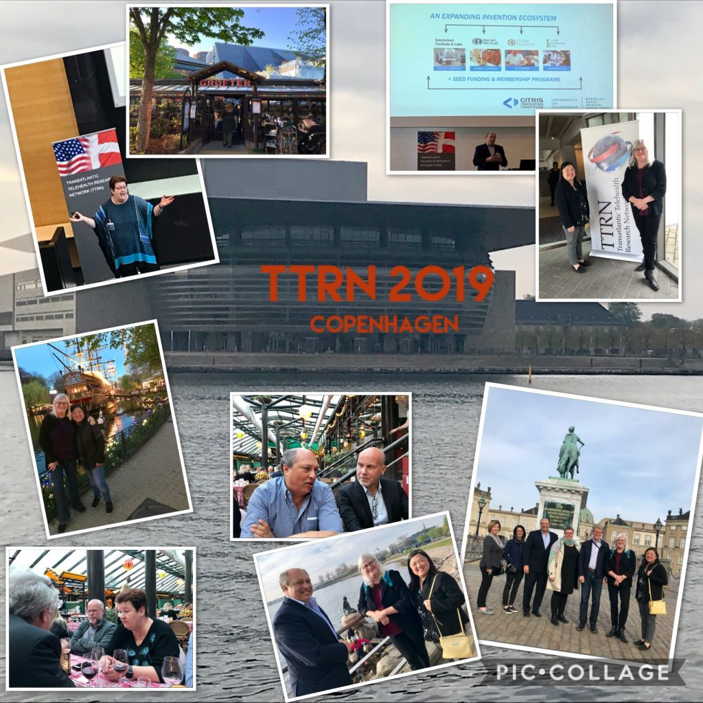 TTRN CPH2019 Collage